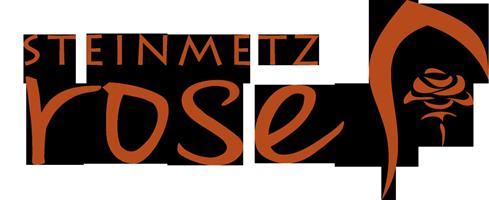 Steinmetz Rose  - Steinmetzbetrieb und Fachmann für Grabmale in Ilmenau